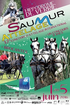 International Driving Events in Saumur