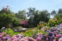 Pixim-angersloirevalley-terra botanica-10-260122
