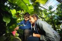 Pixim-angersloirevalley-terra botanica-3-260115