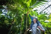Pixim-angersloirevalley-terra botanica-4-260116
