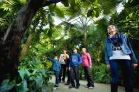 Pixim-angersloirevalley-terra botanica-5-260117