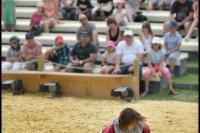 Pixim-castle-Saumur-show-day horse-Petiteau-800-72250-3