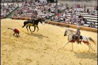 Pixim-castle-Saumur-show-day joust-landscape-Petiteau-800-72253-3