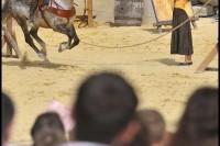 Pixim-castle-Saumur-show-day joust-Petiteau-800-72254-3