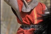 Pixim-castle-Saumur-show-day-plan-clamp Petiteau-800-72256-3