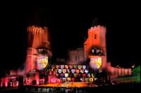 Pixim-castle-Saumur-show-night-view-General Petiteau-800-72261-3