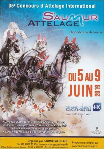 International Driving Competition in Saumur